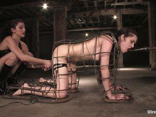 Порно бдсм раб